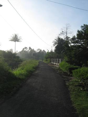 Keindahan Alam Di Pagi Hari Oetoesan Melajoe