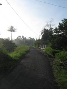 Keindahan Alam di Pagi hari