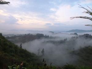 Lembah dimana sedang diusahkan menanam Sawit.